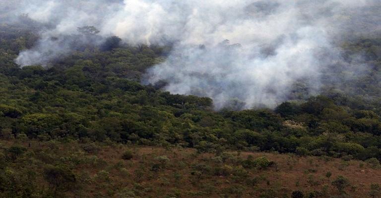 AGU cobra mais de R$ 2.6 bilhões de desmatadores da Amazônia
