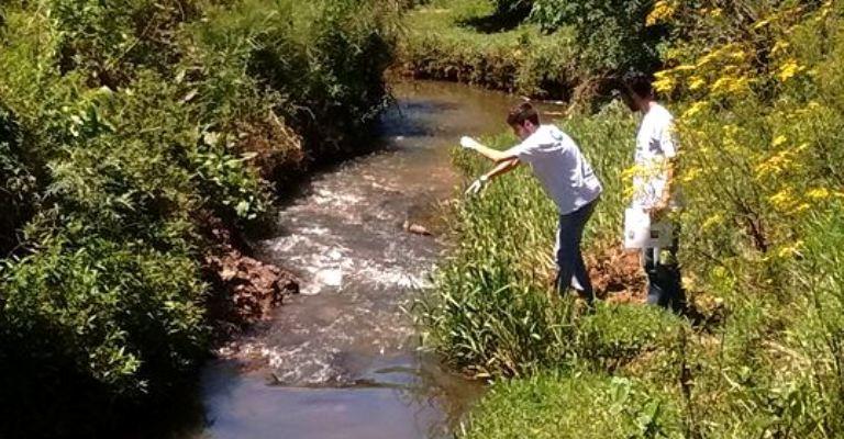 Inteligência artificial prevê qualidade da água em rios da Mata Atlântica