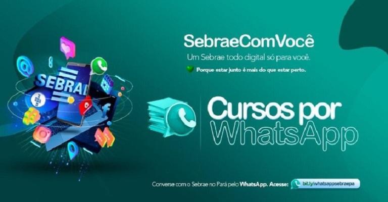 Sebrae lança 15 opções de cursos online gratuitos pelo WhatsApp