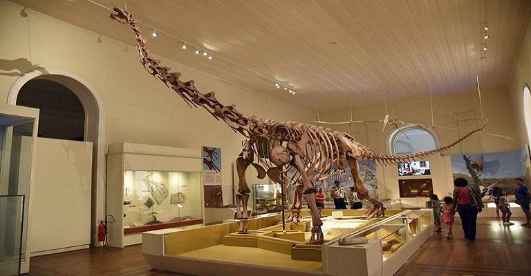 Por que não valorizamos os museus da forma como eles merecem?